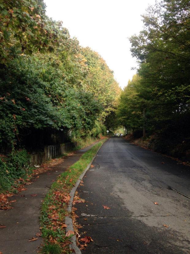 the bend in the road dexter way adventure